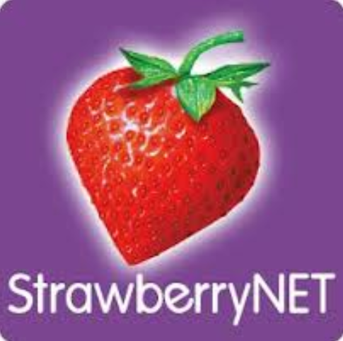 Popular Cosmetics Site Strawberrynet Operates an Insecure Policy