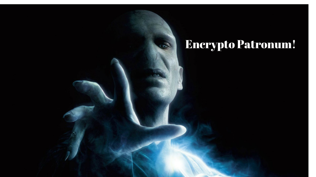 New Voldemort/Nagini Ransomware Virus Infection
