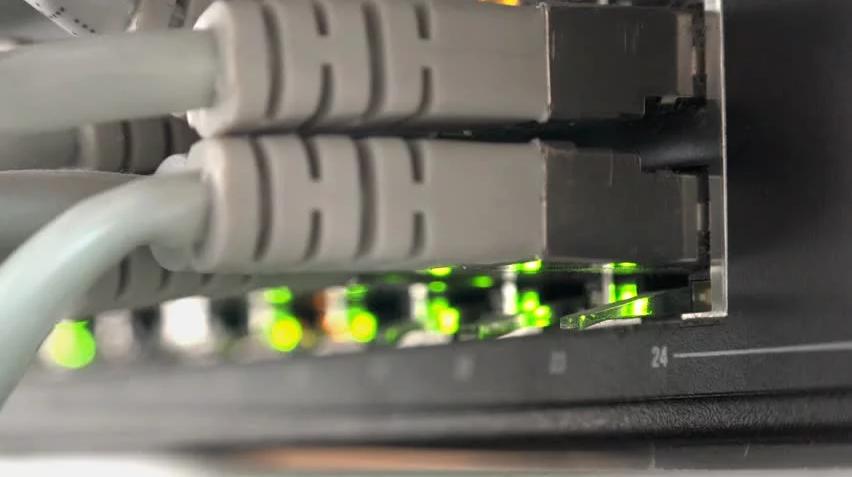 New Mirai Botnet Strain Discovered