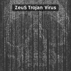 ZeuS Trojan Virus Removal Gide bestseciritysearch bss